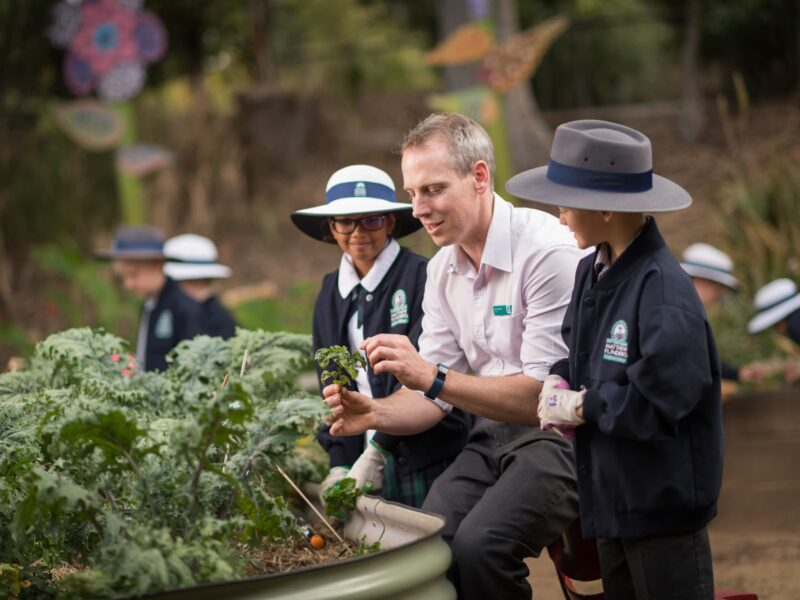 Primary-teacher-edible-garden